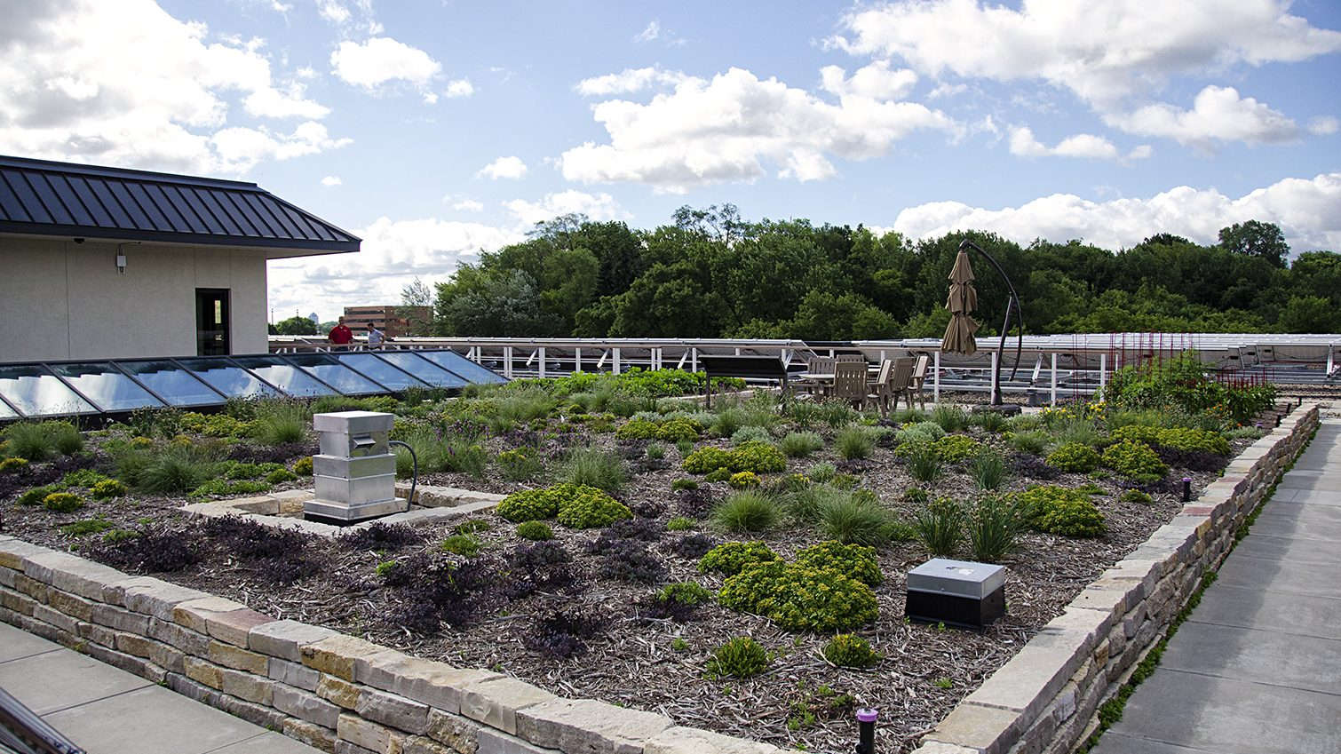 reuse irrigated green roof