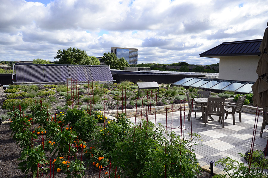 green roof stormwater bmp