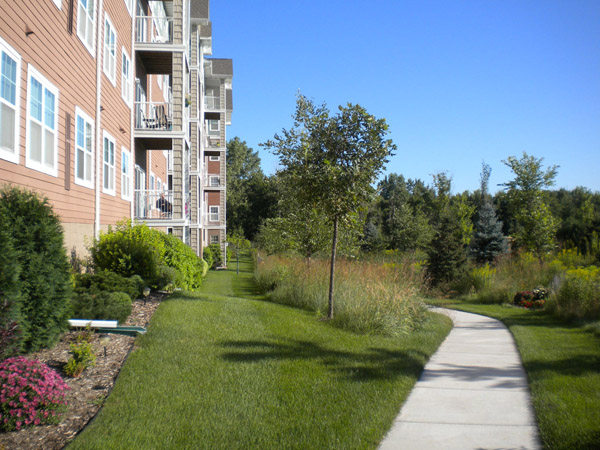 multi unit housing with native grasses